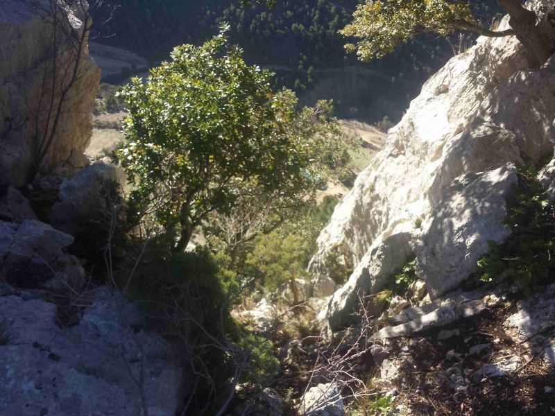 Rocher du Saint-Julien: buislesbaronnies019.jpg