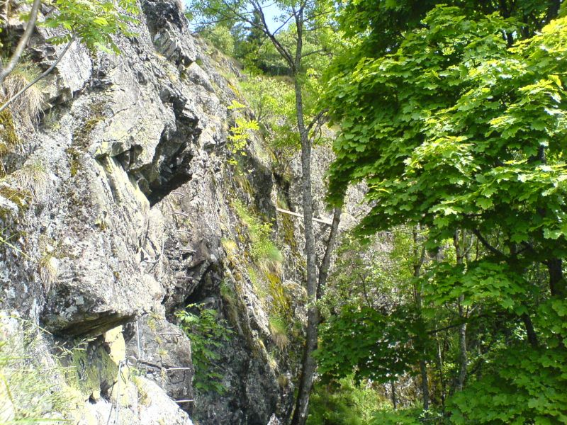 Rando-ferrata de la Source de la Moselle: bussang008.jpg