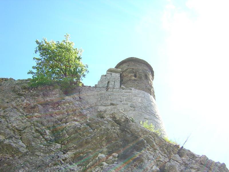 Les Prises de la Bastille: grenoble35.jpg