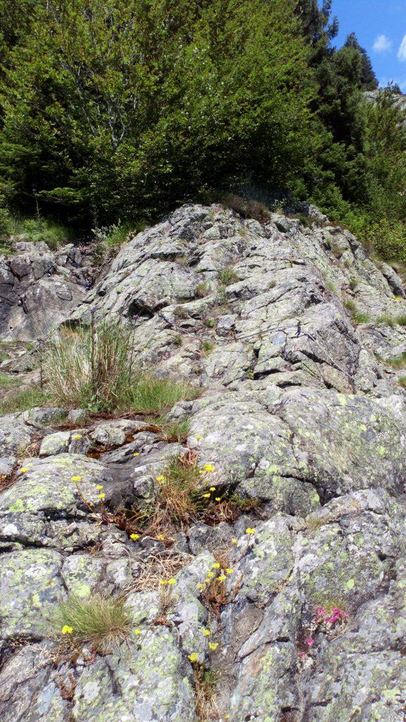 La via ferrata de la Cascade: lalpedugrandserre056.jpg