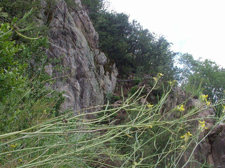 La via Ferrata du haut des gorges du haut cher: lignerolles006.jpg
